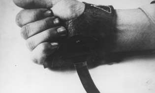Noč, ko so utihnile violine ali boj proti »ciganski kugi«